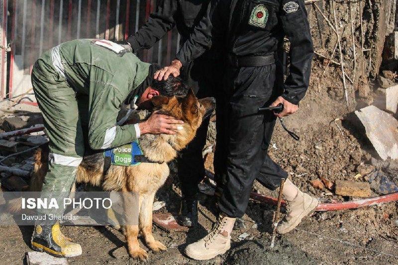درخواست یک آتش نشان از سگ زنده یاب پلیس برای یافتن همکارش در زیر آوار