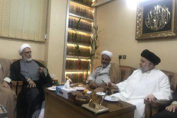 دیدار آیت الله منتجب نیا با نماینده تام الاختیار آیت الله العظمی سیستانی در ایران
